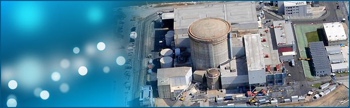 Duke Energy's Crystal River Nuclear Plant Auction